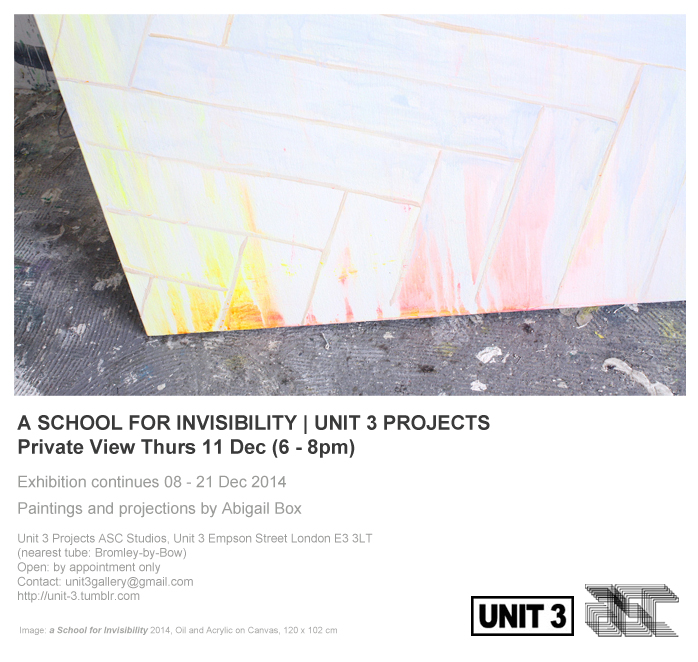 a school for invisibility abigail box ASC copy (2)